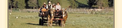 9 hay ride
