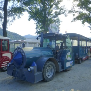 the train from the pier that the Gentle Walkers or those who needed assistance took to Durnstein