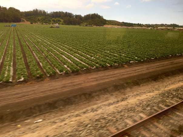 Salinas, California - America's Salad Bowl